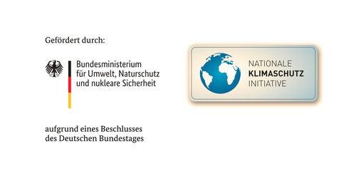 Logos BMU + NKI